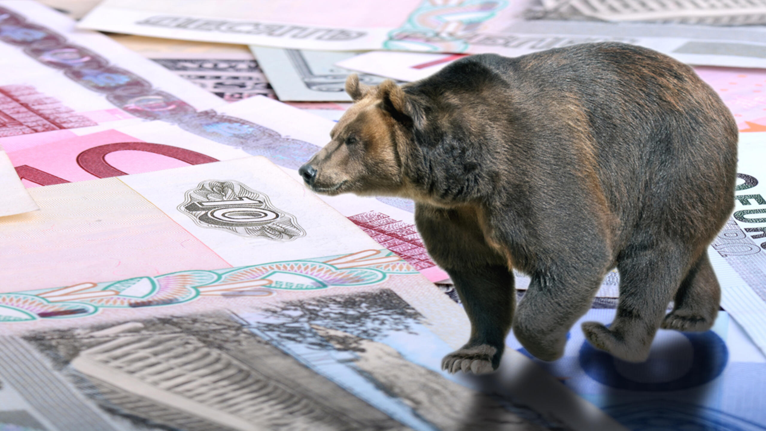A photo illustration of a bear walking on Russian money