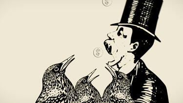 An illustration of a man in top hat stealing coins from birds