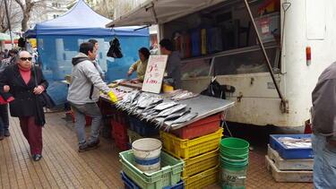 A fish vendor in Chile. Photo by Ahmed Mushfiq Mobarak.