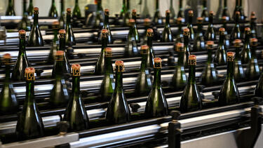 Champagne bottles on an automated assembly line
