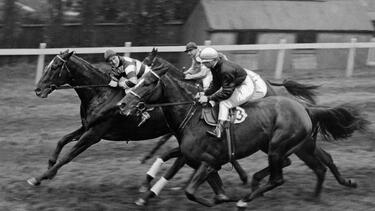 A vintage photo of a horse race