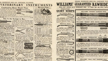"The buggy whips page from the 1910 Sears, Roebuck & Co. ""Harness, Saddles, and Saddlery Goods"" catalog"