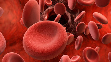 A rendering of red blood cells