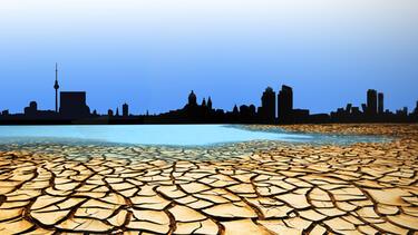 Water economics